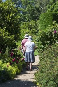 Viejitos caminando por un camino entre arbus